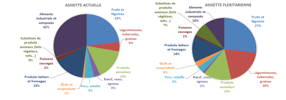 Composition des assiettes traditionnelle et flexitarienne