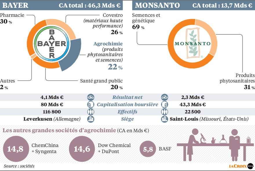 Comprendre la fusion Monsanto Bayer - infographie