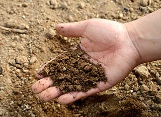 Analyser la terre de son jardin