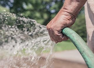 Arroser jardin et potager à l'eau de pluie