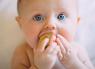 Les bébés mettent leurs jouets en bouche