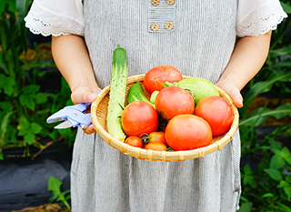 Cultiver ses produits bio avec un potager