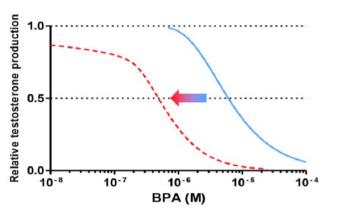 Effets du bisphnéol A en présence de 7 autres composés