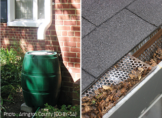 Comment Utiliser Leau De Pluie Au Jardin Et à La Maison