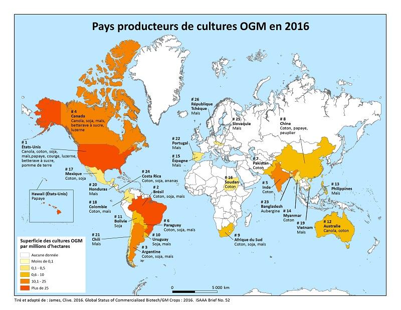 Carte des pays producteurs d'OGM