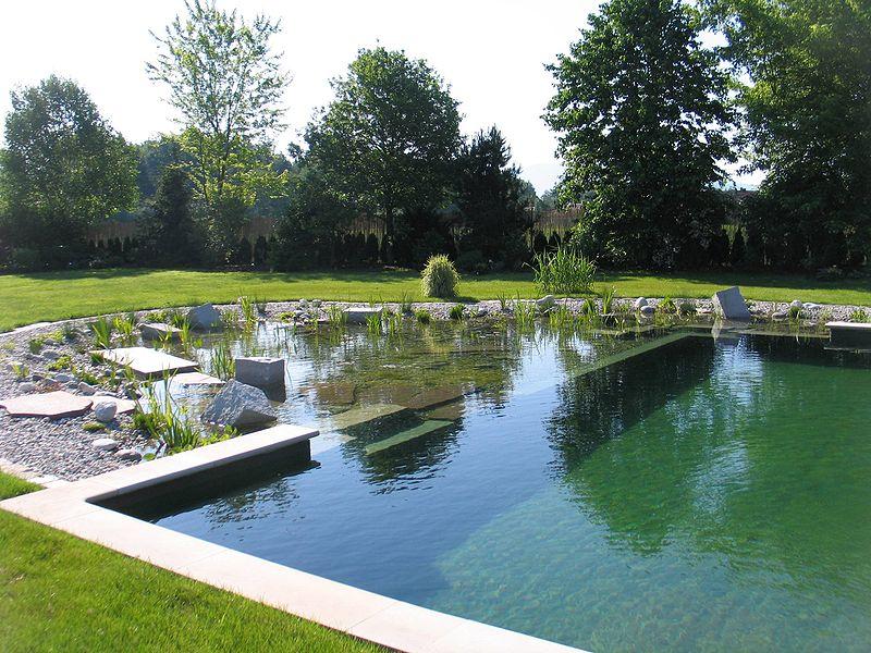 Un autre exemple de piscine naturelle