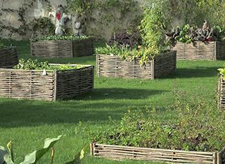 Organiser les plantations du potager