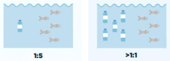 Bientôt plus de plastique que de poissons dans l'océan