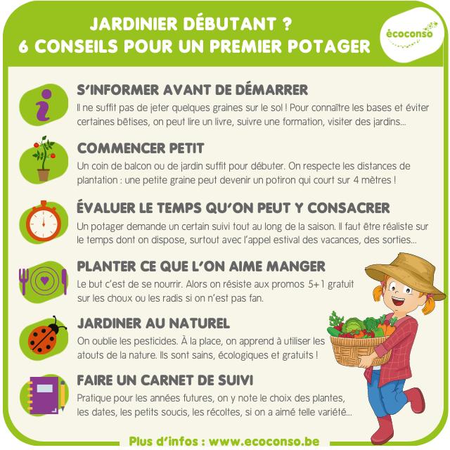 Premier potager : 6 conseils pour le jardinier débutant