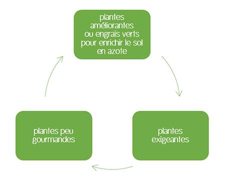 Cycle de base pour la rotation des cultures