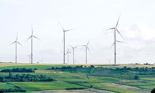 En transition : éoliennes citoyennes