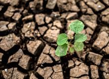 Accord de Paris sur le climat : bilan