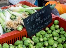Pour le climat, on mange local, de saison et bio