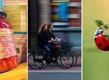 Conférences santé : étiquettes alimentaires, vélo et pesticides