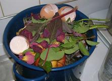 Seau à compost. Photo par Kelsey sur flickr - https://www.flickr.com/photos/lekrosri/1752984672/