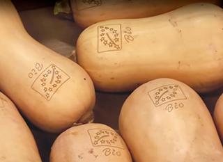 Fruits et légumes bio gravés, sans emballage
