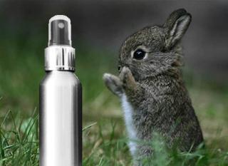 Fini de tester les cosmétiques sur les animaux ?