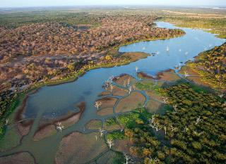 Vue aérienne de la rivière Rufiji, Tanzanie.