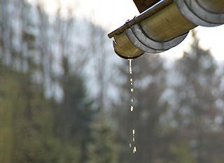 Il y a plusieurs bonnes raisons de récupérer l'eau de pluie