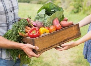 Consommation collaborative & alimentation : bonnes adresses en Belgique