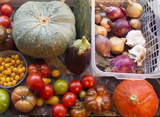 Conserver les fruits et légmes sans frigo ?