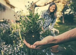 Le plein d'astuces pour un beau jardin et un potager productif, sans pesticide