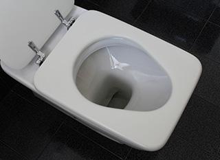 Un produit écologique et fait maison pour des toilettes nickel