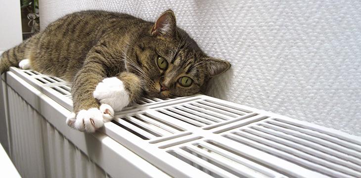 Se préparer pour un hiver économe en chauffage et confortable
