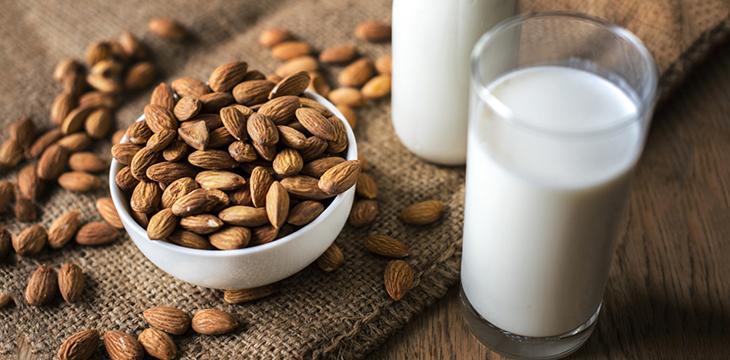 Quel lait végétal choisir ?
